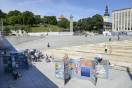 MarjamaaMKK - Tallinn ARTweek - v-0651